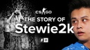 The Story Of Stewie2k From Pug-Star to Superstar