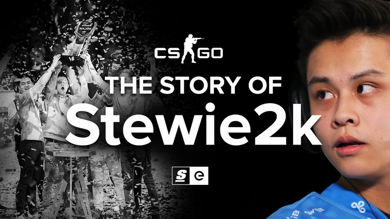 The Story Of Stewie2k From Pug Star to Superstar