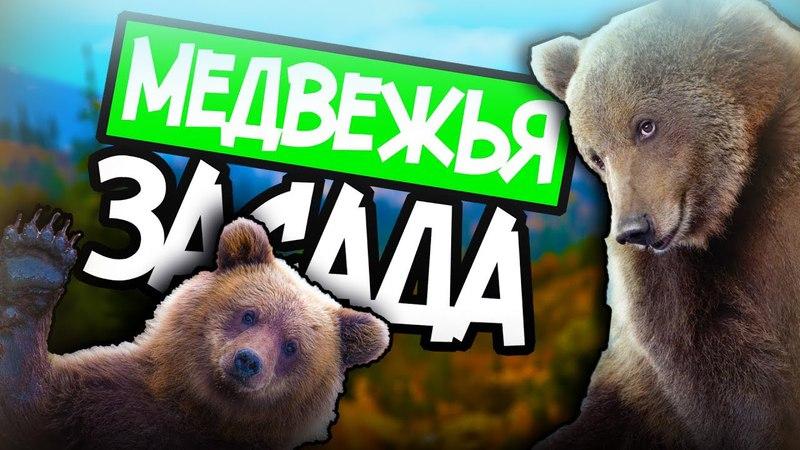 3 Far cry 5 Медвежья засада Вдоводел, медведи