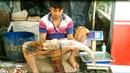 Amazing Big Carp Fish Cutting | Carp Fish Cutting into Pieces in the Fish Market.