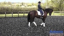 Hannah Biggs How to teach your horse the pirouette in walk
