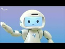 Introducing QTrobot The humanoid social robot for healthcare education and research