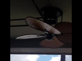 Talk about a fan belt, one motor turning 10 ceiling sweep fans. Pure genius...