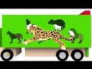 Мультики про машинки. Учим диких животных. Развивающий мультфильм для детей от 1