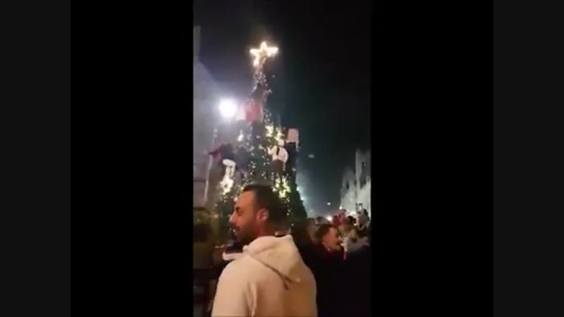 Muslims destroy a Christmas tree in a Christian community