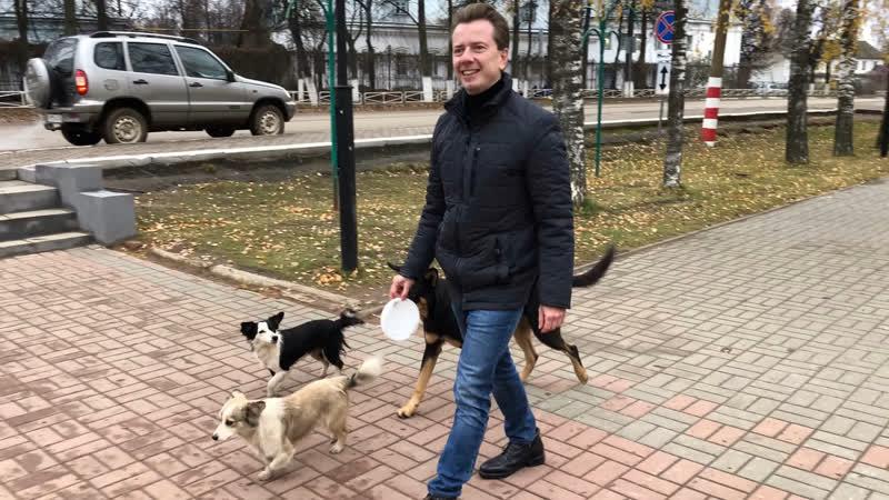 Депутат Государственной Думы Владимир Бурматов поддержал челлендж в защиту бездомных животных
