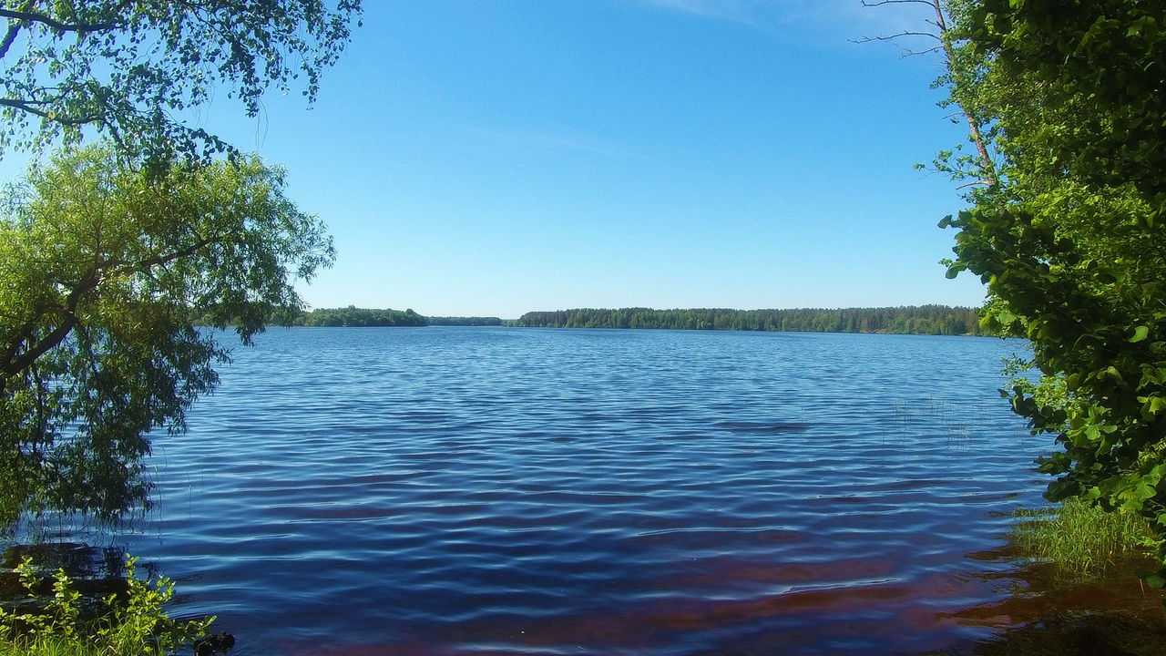 Велопоход к тропе Ятвяга. Озеро Палик и Селява. Березинский заповедник