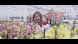 Cat Cogeneration Plant Delivers Power and Heat to JMP Flowers' Greenhouses