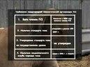 Порода собак Тазы Казахстан