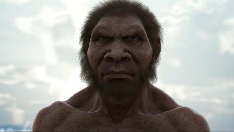 Недостающее звено. Встреча с Homo naledi