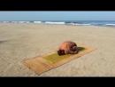 Йога при сколиозе