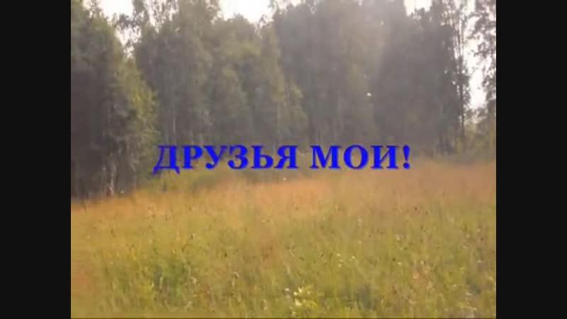 Степной Баджей ВЫПУСК 2017