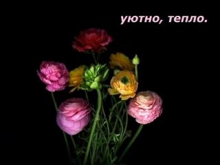 Открытка_с_3d-galleru.ru.mp4