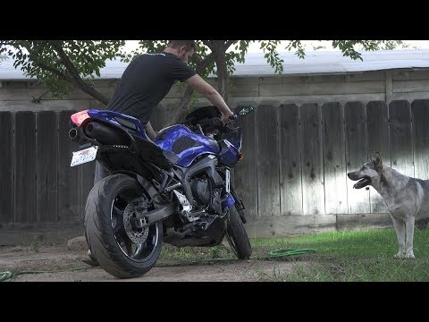 My $50 DIY Exhaust | Yamaha FZ6 Fazer