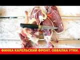 Финка Карельский фронт. Обвалка утки.