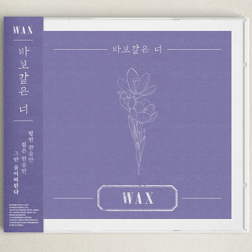Wax альбом Silly you