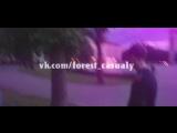 乡Forest Casualy乡//вертуха//by maloy