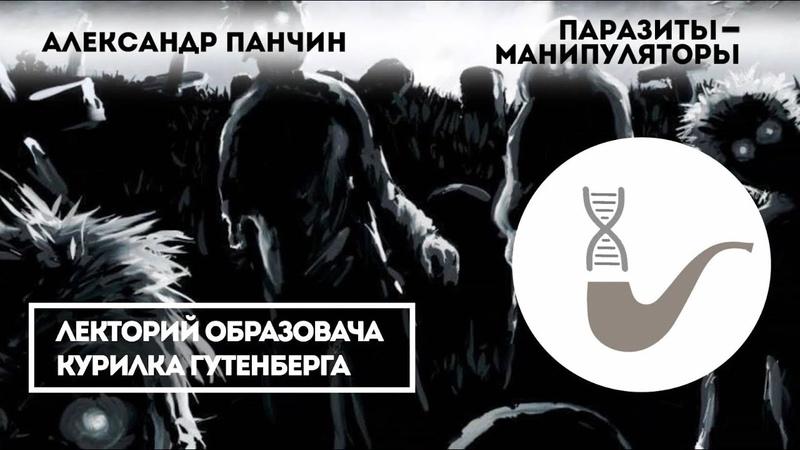 Александр Панчин — Паразиты-манипуляторы
