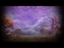 Erins Vineyard - Follow