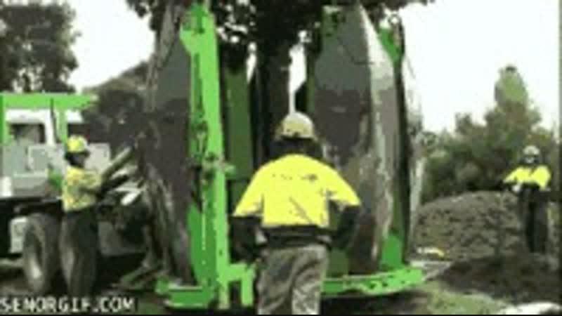 Супер техника посадка деревьев
