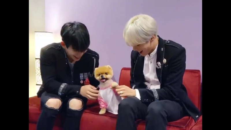 Wonhyuk are the most precious