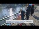 Вести Москва Вести Москва Эфир от 08 04 2016 11 35