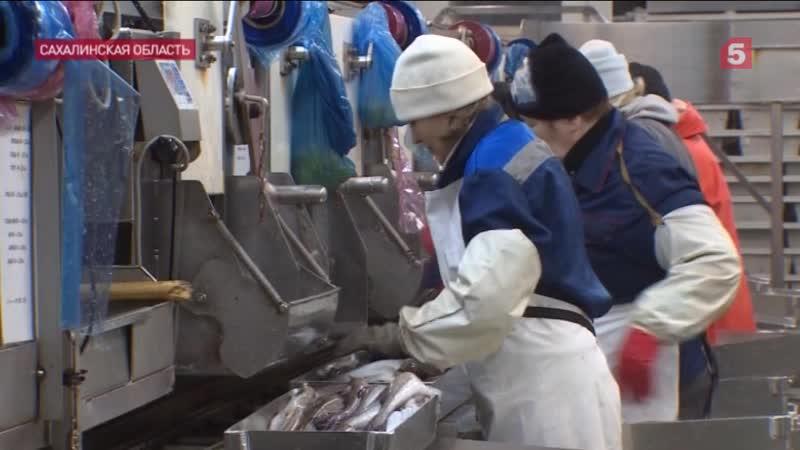 Жители Южных Курил обеспокоены территориальными претензиями Японии