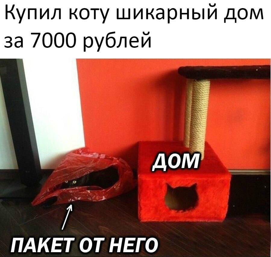 https://pp.userapi.com/c845324/v845324676/2f0e/6k4SdWrRrRc.jpg