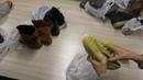 Обувь Италия сток кожа 20 шт лот 15