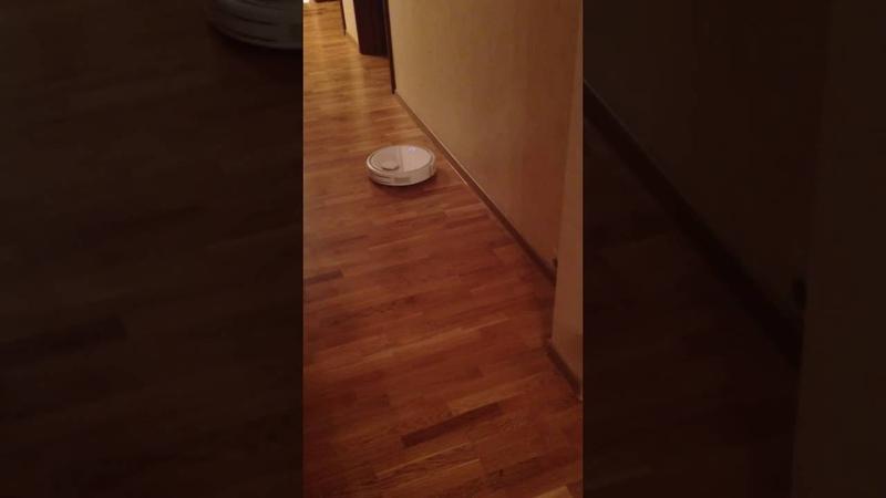 Робот пылесос Xiaomi Robot Vacuum и кот. Уборка углов.