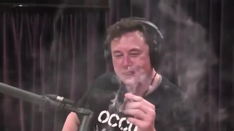 Илон Маск пыхнул дури и улетел без ракеты