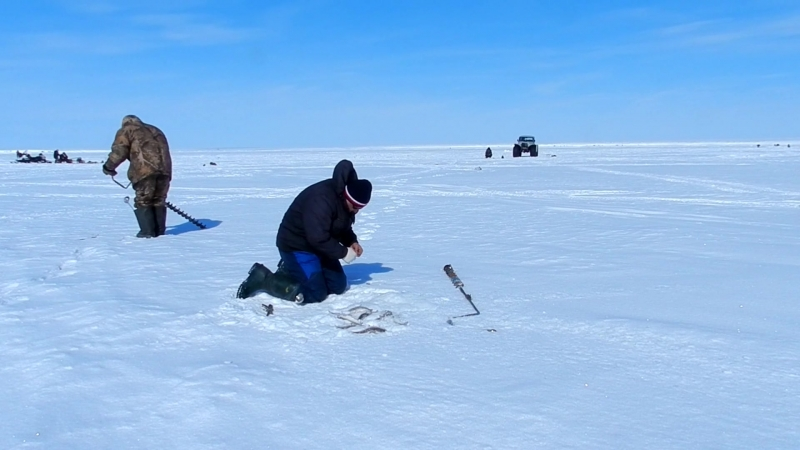 рыбалка в заливе Онемен