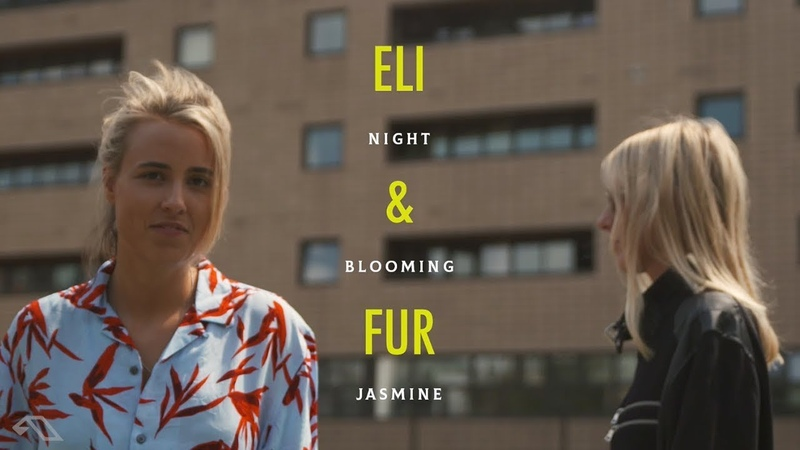 Eli Fur and Anjunadeep present: Night Blooming Jasmine