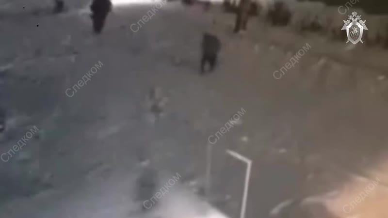 10-летняя школьница отбилась от педофила. 14.11.2018, Лесосибирск