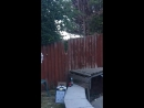 Lad climbing over garden fence falls off when it snaps beneath him