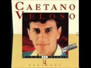 Caetano Veloso Podres Poderes
