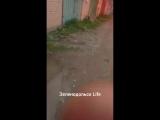Видео от подписчика. говорят что в Зеленом Доле ЧП было. Кто, что знает об этом?