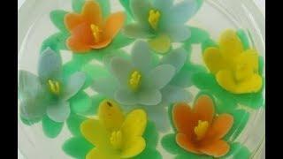 Rau câu sinh nhật 3D Gelatin art tutorial