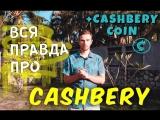 ВСЯ ПРАВДА О КЕШБЕРИ И ГОВНОМОНЕТУ CASHBERYCOIN от CryptoBossa