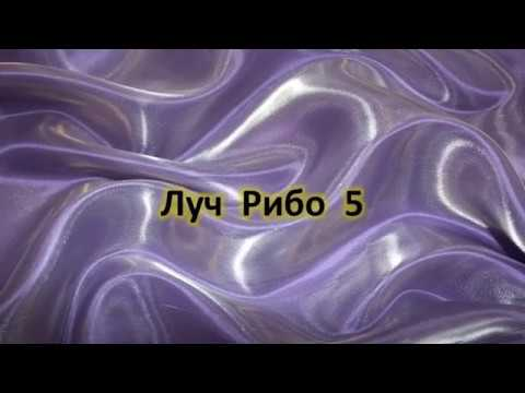 Учение Аркадия Петрова Древо Жизни Луч Рибо 5