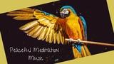 Beautiful Relaxation Music For Meditation, Endorphin &amp Serotonin Release, DNA Healing, Yoga &amp Spa