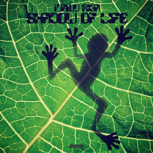 Manu Riga альбом Shadow Of Life