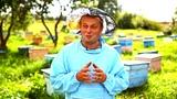 Пчеловод Сергей Клементьев