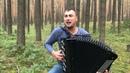 БАЯНИСТ РВЁТ ДУШУ Хит группы Король и Шут - Лесник на баяне
