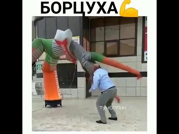 Борцуха