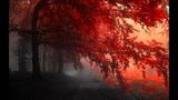 Vibrasphere - Autumn Lights (MindWave Remix)
