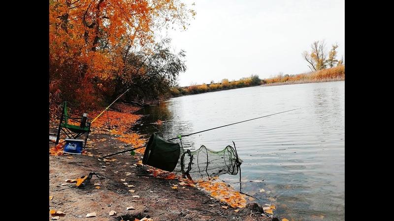 Рыбалка осенью 2018 на поплавок ловля карася и карпа НА ЧТО ЛОВИТЬСЯ ОСЕНЬЮ