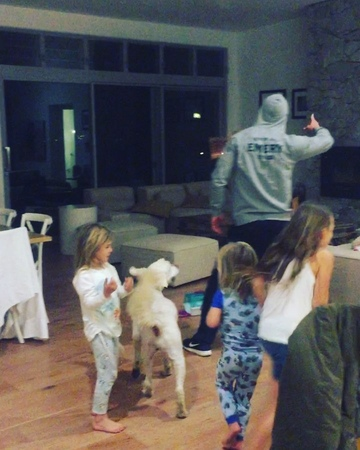 """Chris Hemsworth on Instagram: """"What started as a ground breaking music video ended in a savage attack by a cowardly K9. Never work with Kids or Ani..."""