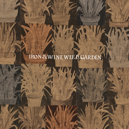 Iron & Wine альбом Waves of Galveston