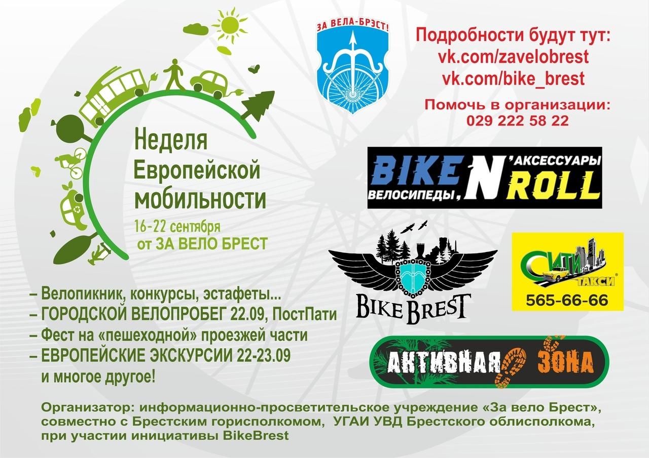 В городе состоятся дебаты пешеходов, велосипедистов и водителей. Кто кого?